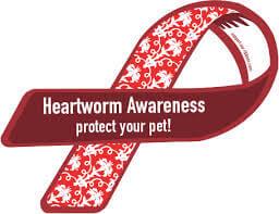 Heartworm-awarness-ribbon