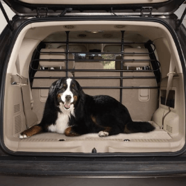 For vary large dogs or cars that are too small to fit a big enough dog crate into a pet divider might be a good option to secure your dog