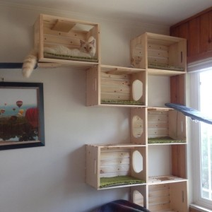 This Aztec client used $5 wooden crates from Home Depot, cut holes in the ends, added pieces of carpet and mounted them on their sides on the wall.