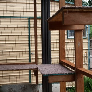 "Built in perches enable the cats to observe the outdoor in a comfortable place ""above"" the bustle of the world. The addition of a bird feeding station safely outside the enclosure can also provide much enjoyed visual stimulation for your cats."