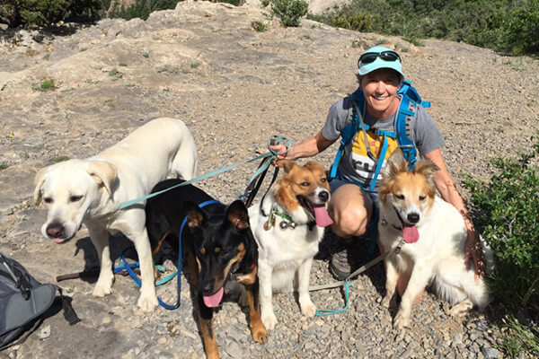 Dr. McGuire with (from left to right) her two dogs Taylor and Lacy, and her 2 grand-dogs Charlie and Roo, out for a hike in the Sandias.