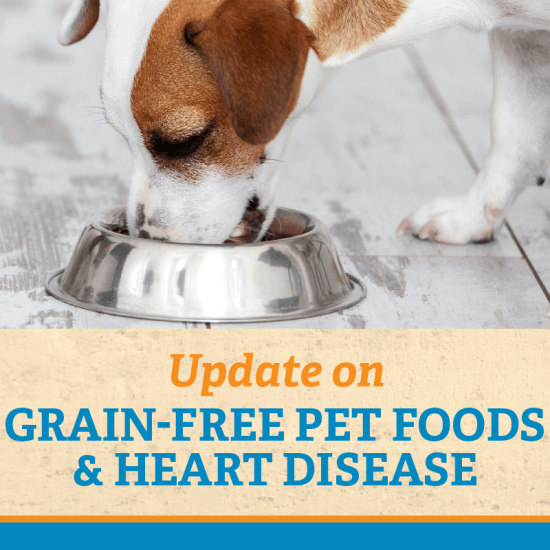 Update: Grain-Free Pet Foods & Heart Disease