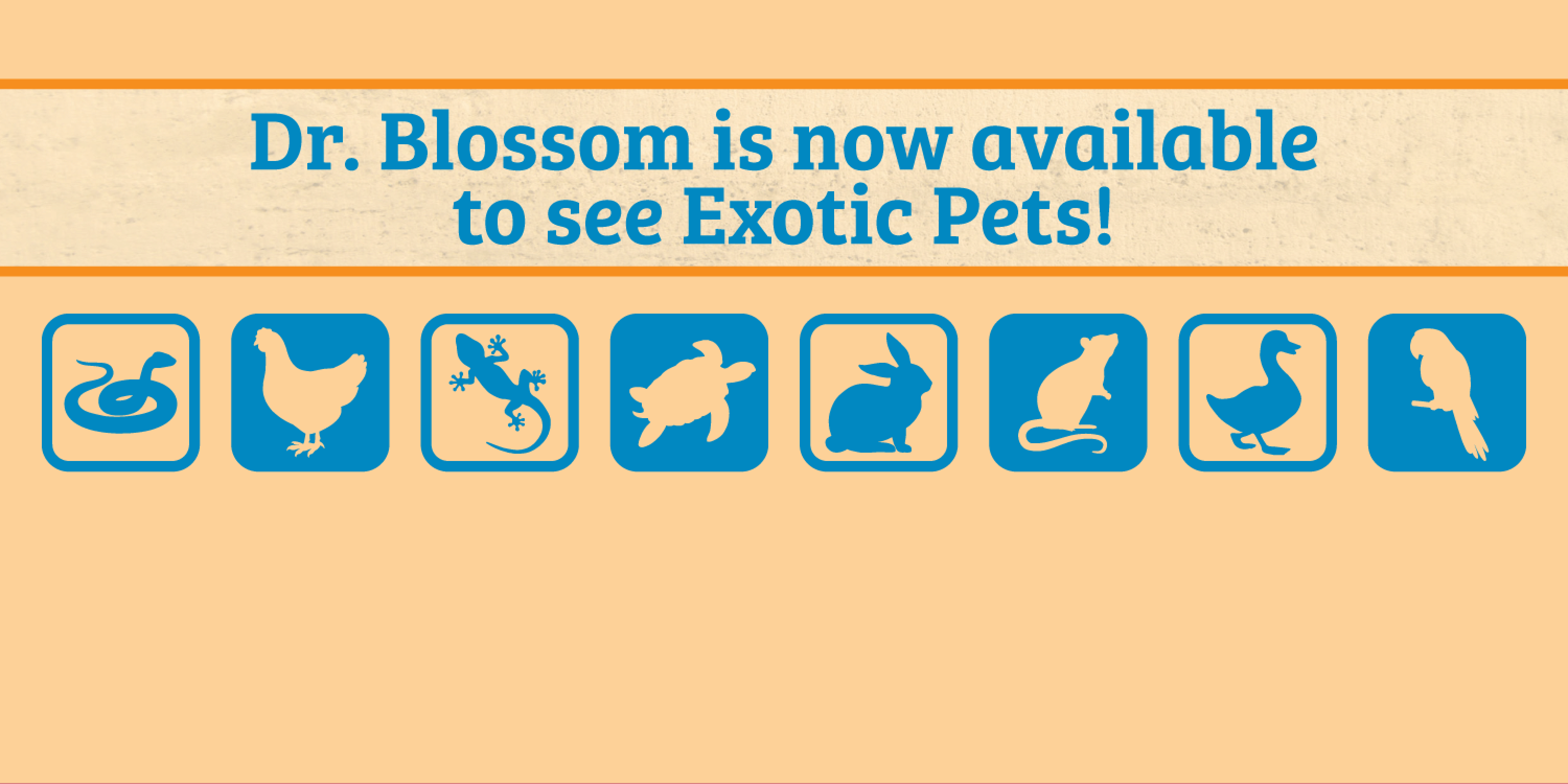 Dr. Blossom is now available to see Exotic Pets!